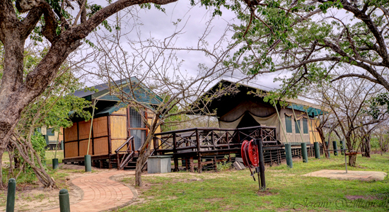 Mpila Camp 2 Bed 4 Bed Safari Tents Accommodation Hluhluwe iMfolozi Game Reserve